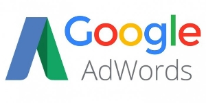 Google Ads (AdWords) Qualified Professional