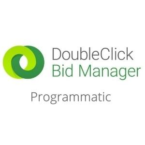 Google DoubleClick Programmatic Strategies